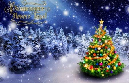 Поздравляем вас с  наступающим 2019 годом и Рождеством!